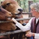 Ingrid Newkirk: the animal activist is still angry at 70