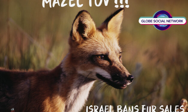 Israel Becomes the First Country Ever to Ban Fur